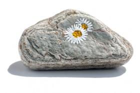 stenen-4466